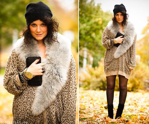 348985_leopard